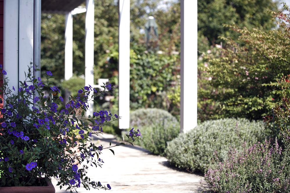 naturnahe gartengestaltung mit naturpool lauterwasser gartenbau landschaftsbau benningen. Black Bedroom Furniture Sets. Home Design Ideas