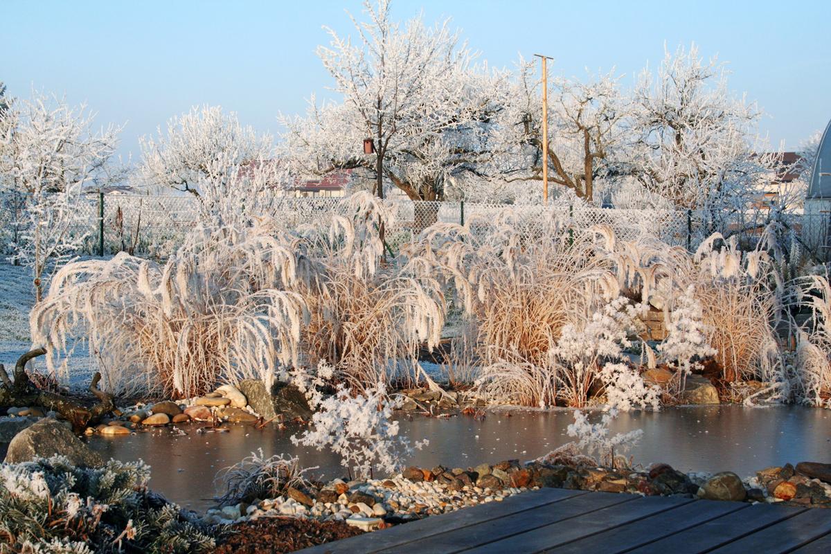 Winter schnittarbeiten wartungsarbeiten lauterwasser gartenbau landschaftsbau benningen - Winter gartenbau ...
