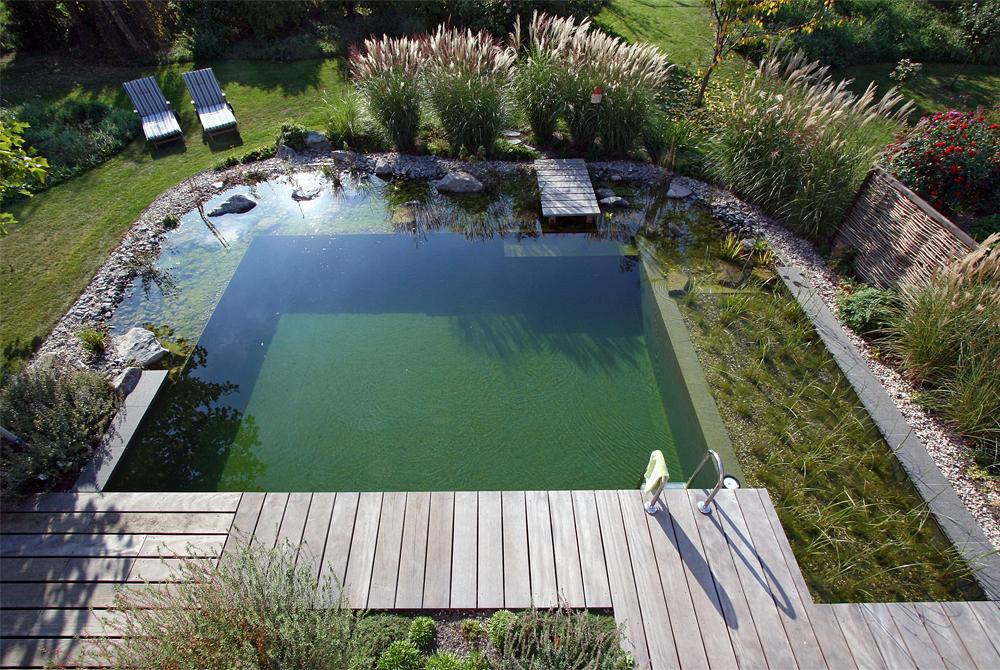 Projekt 1 schwimmteich naturpool gartenteich for Stahlwandpool im garten